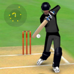 Smashing Cricket – a cricket game like none other MOD   3.1.3
