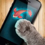Fish game toy for cats MOD (Unlimited modes) 1.2