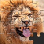 Puzzles for Adults no internet 1.4.8 MOD (Unlimited Money) Varies with device
